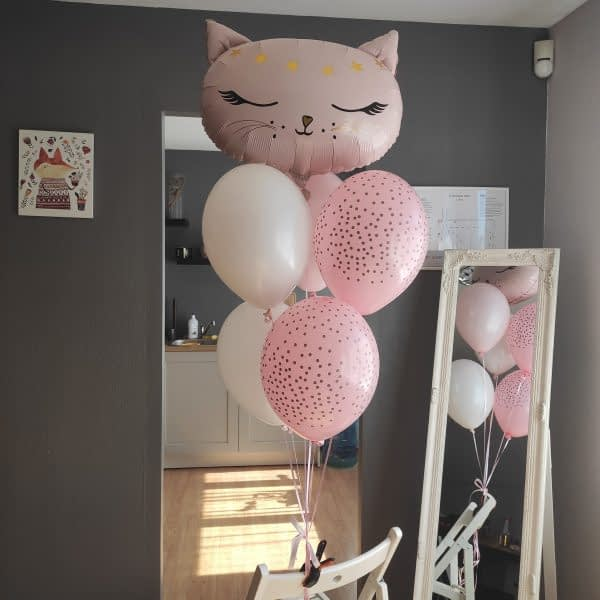 Rozā balonu bunte ar kaķi