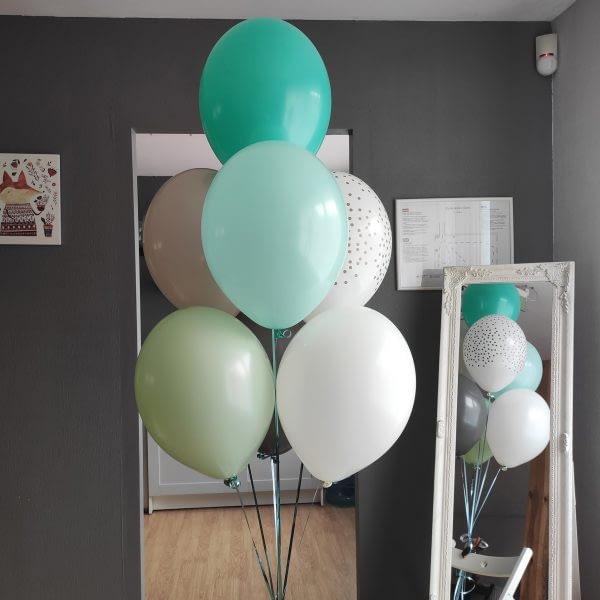Skaists 7 balonu komplekts puisītim
